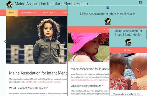Maine Association for Infant Mental Health